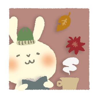 Reading rabbits