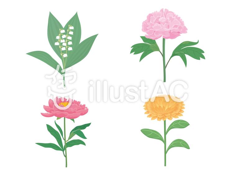 5月の花たちイラスト No 428505無料イラストならイラストac