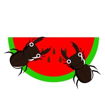 Watermelons and stag beetles