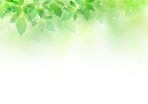 Fresh green material 58