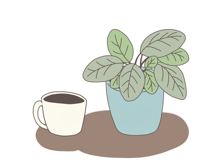 Houseplant and coffee (with background)