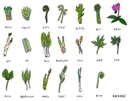 Wild vegetable set