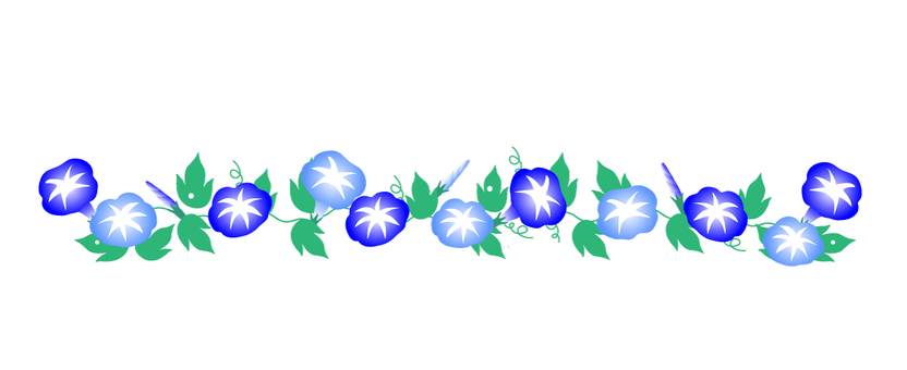 서양 나팔꽃 (헤븐리 블루) 라인 일러스트
