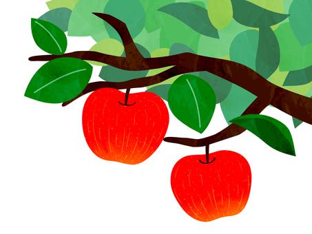 사과 따기 일러스트 소재 B
