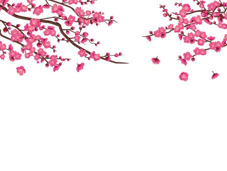 早春梅花幀剪·深粉色