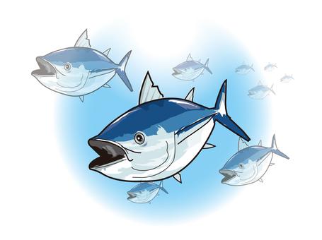 Tuna, fish and sea