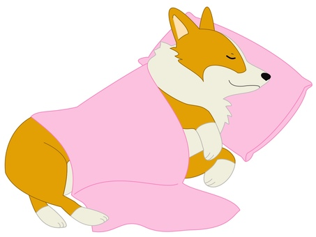 Corgi bedding pink