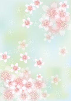 벚꽃의 꽃 119