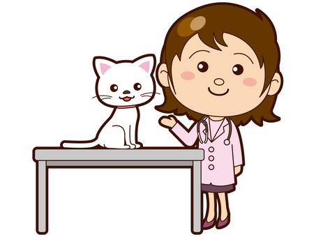 Examination table cat and veterinarian