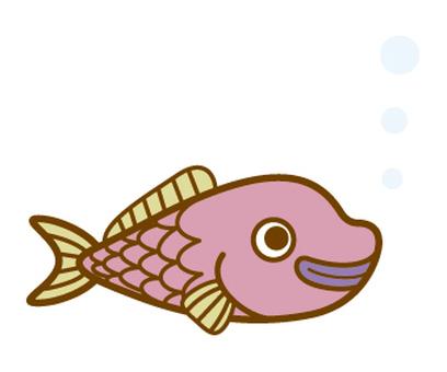 생선 02