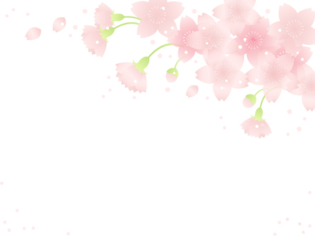 Sakura Frame 8