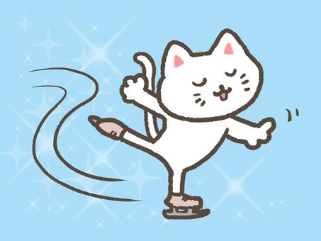 스케이트 고양이