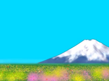 Fuji and spring landscape