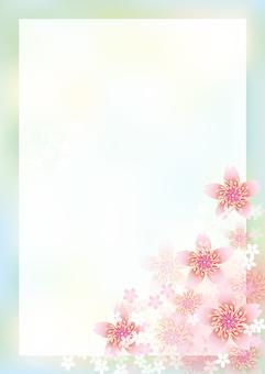 Cherry Blossoms & Board 7