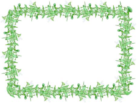 Sage's frame (white)