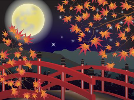 Maple _ and wind bridge _ night 2