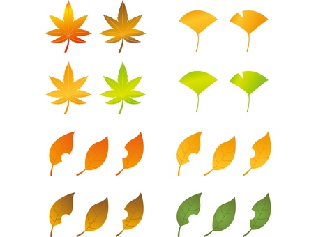 Autumn leaf material set