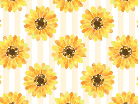 向日葵背景素材02 /橙色