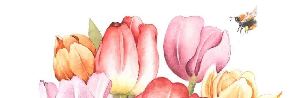 봄, 튤립과 땅벌
