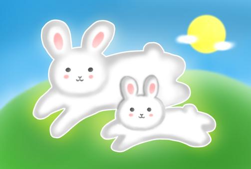 Rabbit parent and child 2