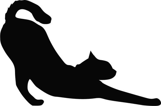 Cat growth 2