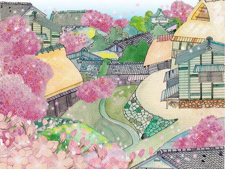 거리 _ 일본식 10_ 산 벚나무