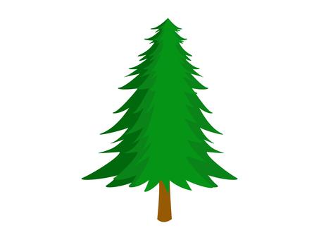 モミの木 クリスマスツリー