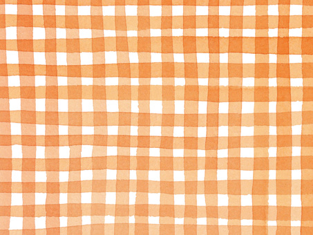 체크 무늬 오렌지