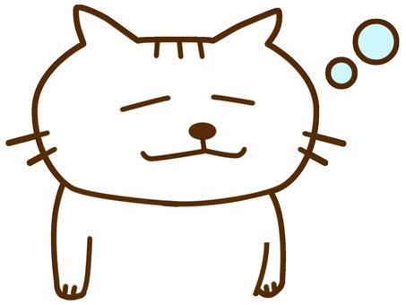 졸린 흰 고양이