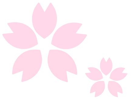 Cherry blossoms (thin)