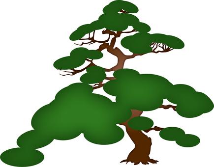 ai 1 pine picture