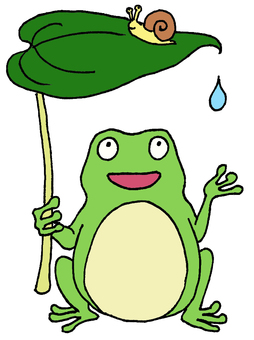 Frog after the rain