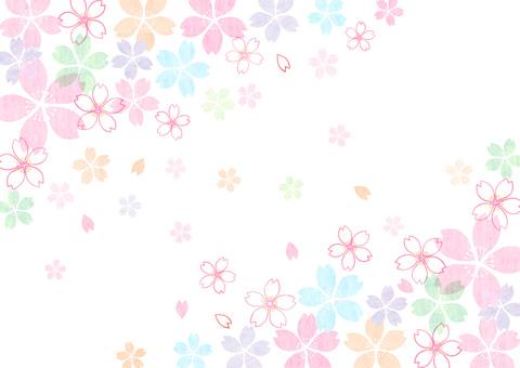 Sakura _ diagonally up and down _ pastel background 1839