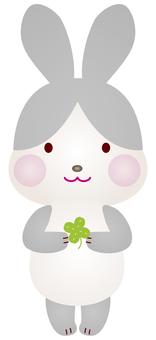 Panda rabbit