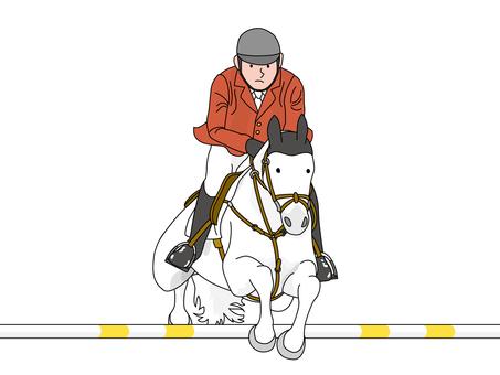 Equestrian sports 4