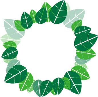 Green _ Plant decorative ruler