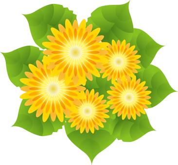 Yellow flower 30