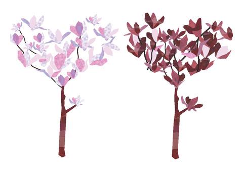 목련 두 그루의 나무
