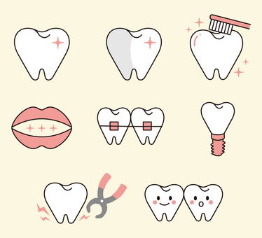Illustrations of various teeth (red)
