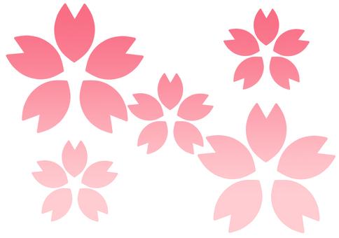 Sakura (Gradet ①)