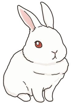白うさぎ(赤い目バージョン)