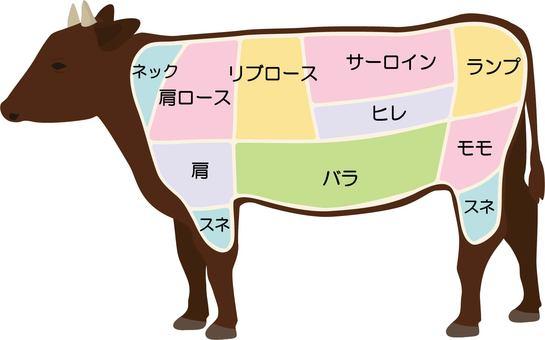 Beef part illustration