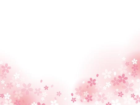 Cherry blossom frame 07