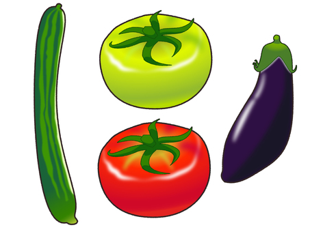 Summer vegetables (cucumber / tomato / eggplant)