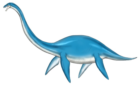 Erasmosaurus