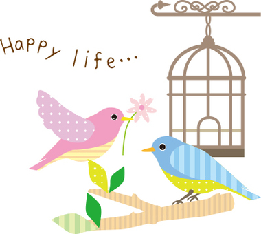 Two birds and a bird cage