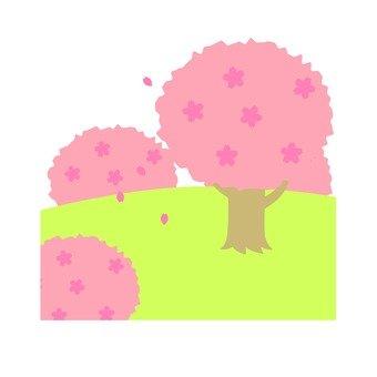 Cherry tree 2