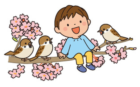 Cherry blossoms and sparrows and children