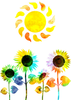 Watercolor style sunflower sun background transparent ant