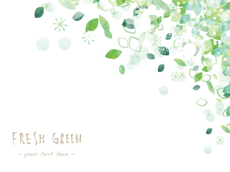 Fresh green frame ver09